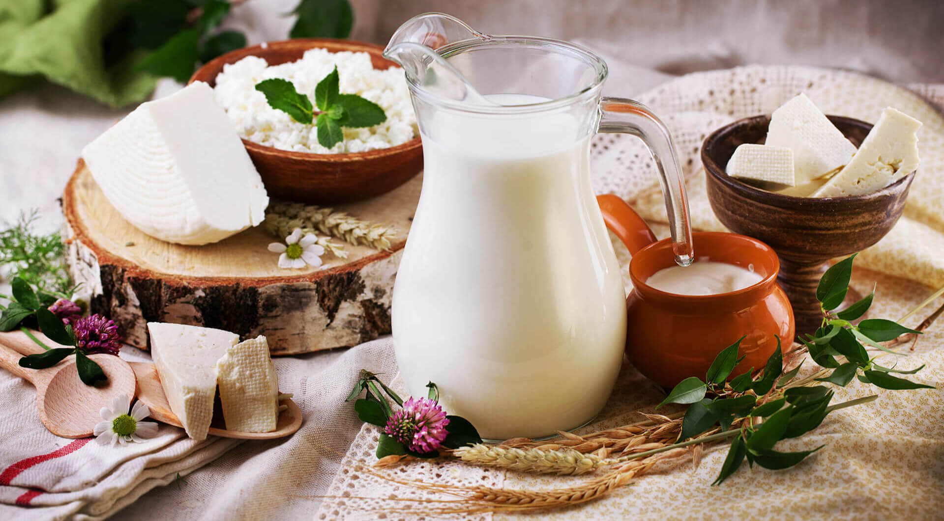 ingredients solution provider, technical ingredients supplier, healthier innovation in dairy, yoghurt, trends and new launches in dairy industry